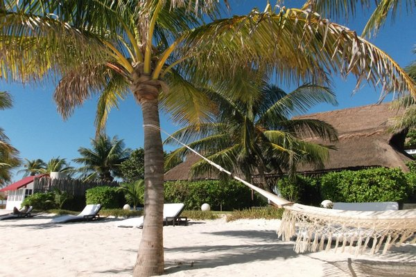 The hammock was a favorite on our trip to this slice of paradise.